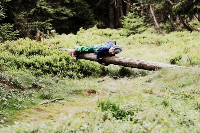 Tobi v lese
